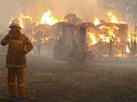 В Австралии уточнено число жертв февральских пожаров