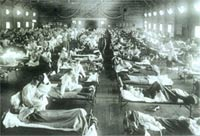 Эпидемия гриппа унесла 3,5 тысячи жизней