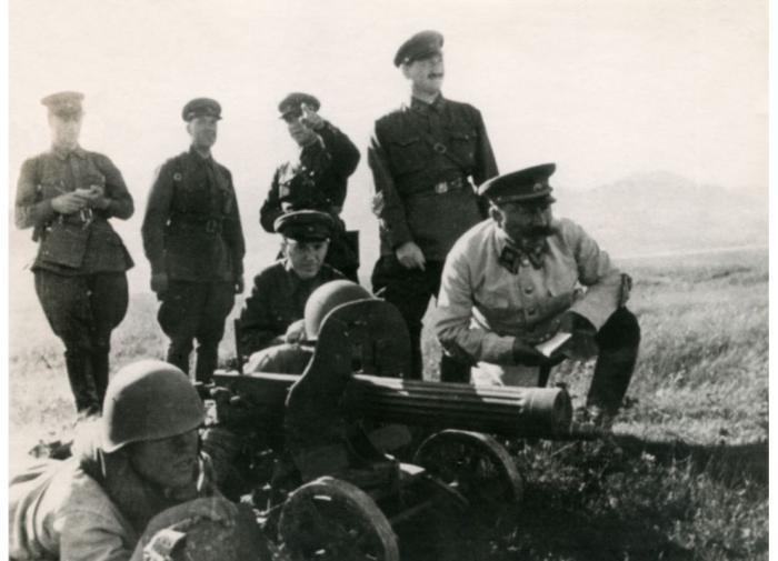 Каждый год в России незаконно вырубают до 20 млн кубометров леса