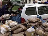 Аргентинские полицейские уничтожили кокаина на 22 млн долларов