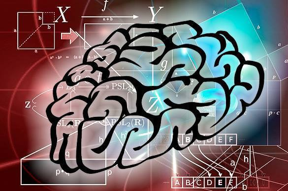 Ученые нашли способ загрузки знаний в мозг?
