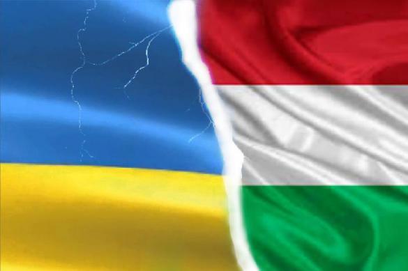 Украина пошла на обострение конфликта с Венгрией. 392773.jpeg