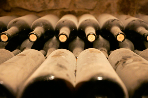Красное вино замедляет старение мозга