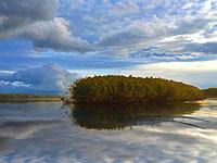 Российский остров, приплывший в Эстонию, может стать причиной