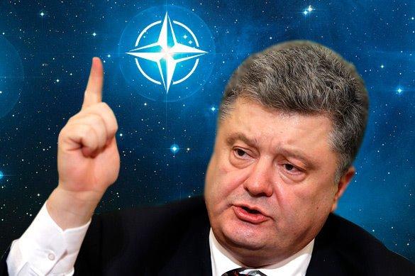 Порошенко ведет Украину стратегическим путем в НАТО