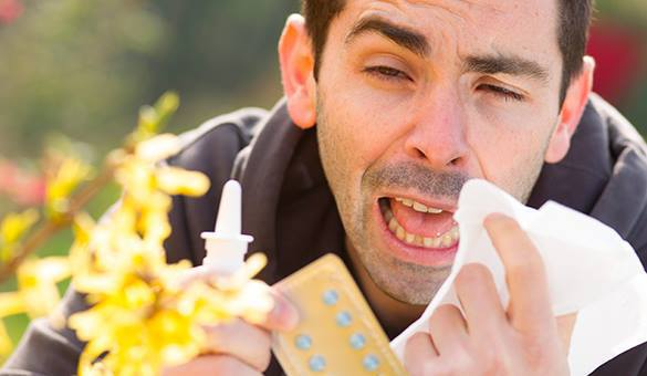 Ученые нашли кардинальное лекарство от аллергии