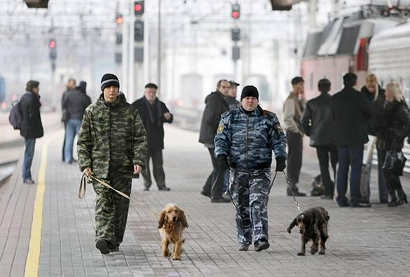 Угроза теракта – лучше перебдеть? Прямой эфир Pravda.Ru. Кинологи с собаками