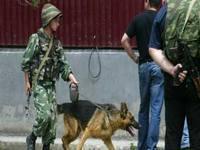 В Дагестане готовится операция по поиску боевиков, напавших на