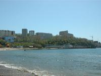 Во Владивостоке дайверы устроили подводную