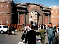 Захваченные туземцами голландские туристы получили свободу