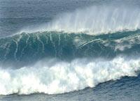После землетрясения в Новой Зеландии цунами угрожает Австралии