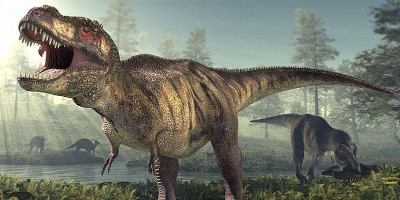 Тираннозавры устраивали резню маленькими лапками. Тираннозавры устраивали резню маленькими лапками