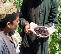 Афганский героин в России продают со стиральным порошком