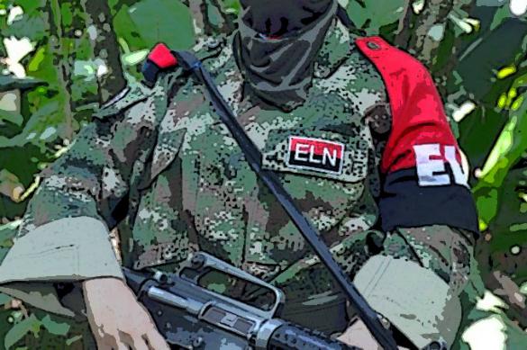 Россиянин, поехавший в Колумбию за ядовитыми лягушками, погиб в плену у повстанцев. Колумбийский повстанец