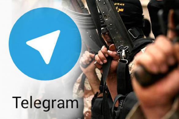 Вопрос дня: предатель ли хозяин Telegram Дуров?. 380795.jpeg