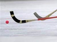 Россияне разгромили американцев на ЧМ по хоккею с мячом. хоккей