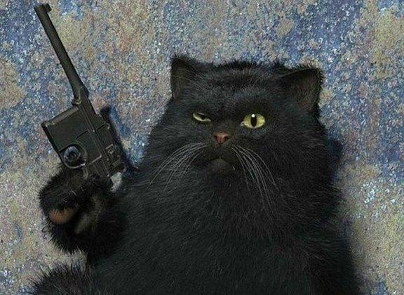 Скрипаль: Убит российской кот семьи, британский - жив. 385798.jpeg
