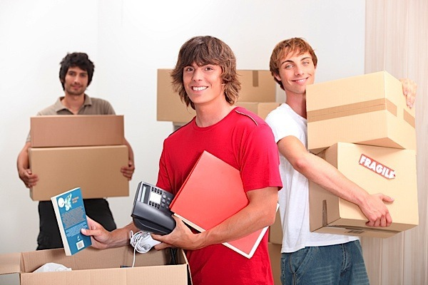 Основные советы для тех, кто снимает квартиру в складчину. 395802.jpeg