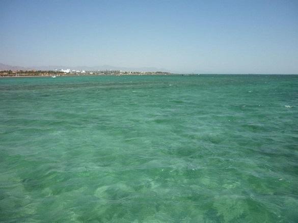 Изобретена бумажная губка для чистки океана от нефтяных разлив