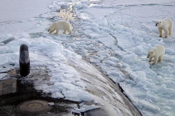 СМИ: западные подлодки вмерзли в лед, тренируя удар по России. 384811.jpeg