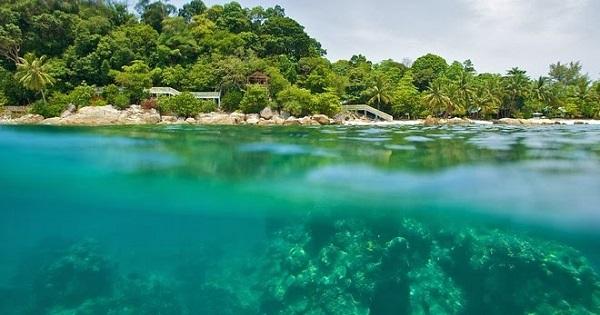 Шесть эпических островов Малайзии, которые должен посетить каждый любитель Азии. 403811.jpeg
