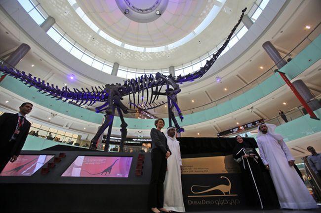 Настоящий динозавр из Юрского периода привезен в Торговый центр Дубаи. 292812.jpeg