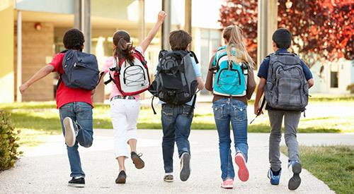 В Роспотребнадзоре напомнили о весе школьных рюкзаков. В Роспотребнадзоре напомнили о весе школьных рюкзаков