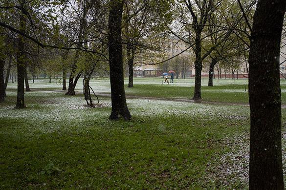 В Москве к концу недели ожидаются похолодание, дождь и северный