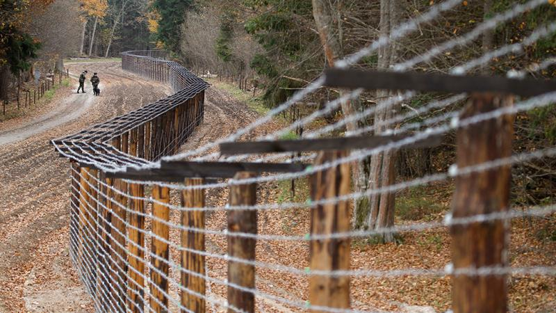 В Литве достраивают забор на границе с Россией. В Литве достраивают забор на границе с Россией