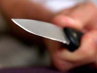 Московская гимназистка ранила подростка ножом. 236822.jpeg