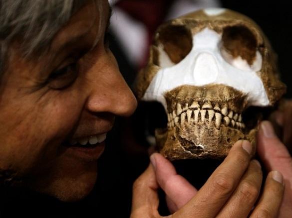 Теория эволюции человека снова опровергнута