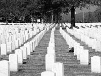 Америка вспоминает своих погибших солдат