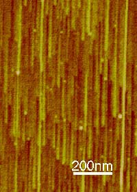 Нанотрубки растут ускоренно и прагматично