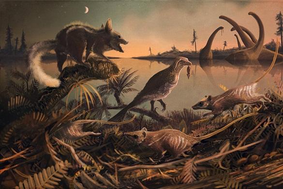 """В Британии найдены останки крысоподобных """"прямых"""" предков человека. 378834.jpeg"""