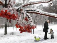 Москва не обойдется без крещенских морозов. 252839.jpeg