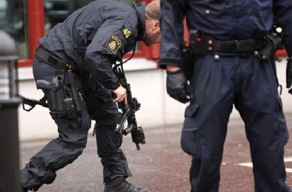 Впригороде Стокгольма бесчинствуют мигранты