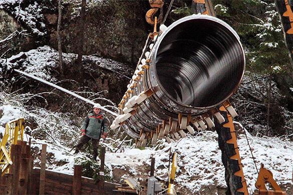 Wintershall: Польше неудастся сорвать реализацию проекта «Северный поток-2»
