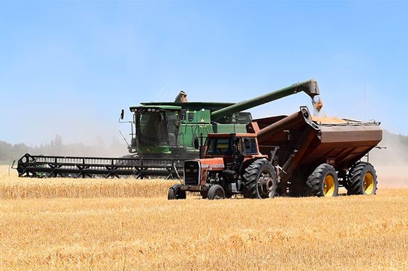 СМИ узнали оновых ограничениях Турции напоставку русской пшеницы