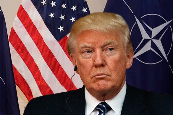 СМИ: на саммите НАТО из-за Трампа отказались от обсуждения Росси