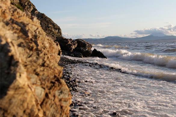 СМИ: На берег Сахалина, возможно, выбросило динозавра.