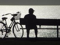 Голые велосипедисты устроили забастовку в Южной Америке. 281852.jpeg