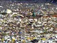 Горы пластикового мусора в мировом океане грозят человеку