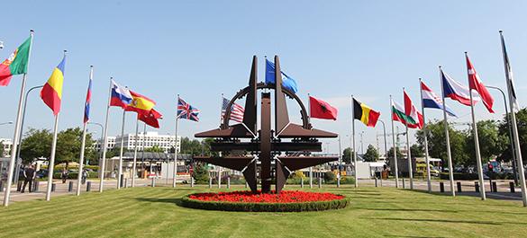 Почему армия НАТО проигрывает. 290857.jpeg