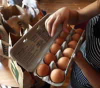 В России дорожает сахар и дешевеют яйца
