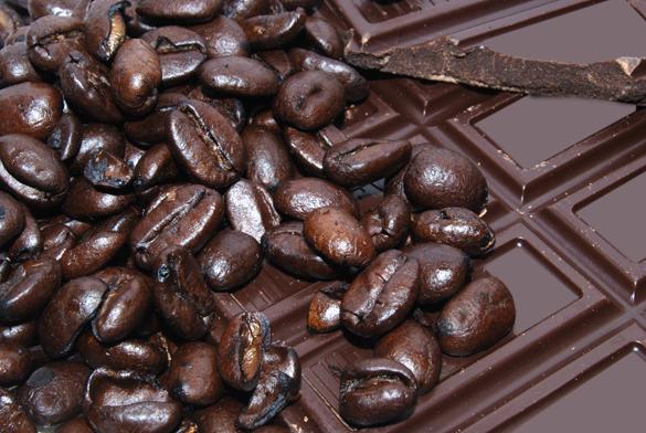Потребление шоколада снижает риск заболеваний мозга