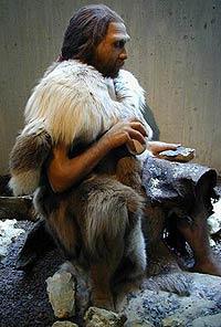 О чем говорили неандертальцы?