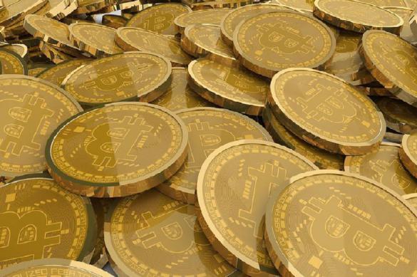 90% активов канадского криптофонда размещены в фиате. 389867.jpeg