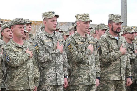 Украинские военные на Донбассе заставляют новичков выкупать у них карты минных полей. 393868.jpeg