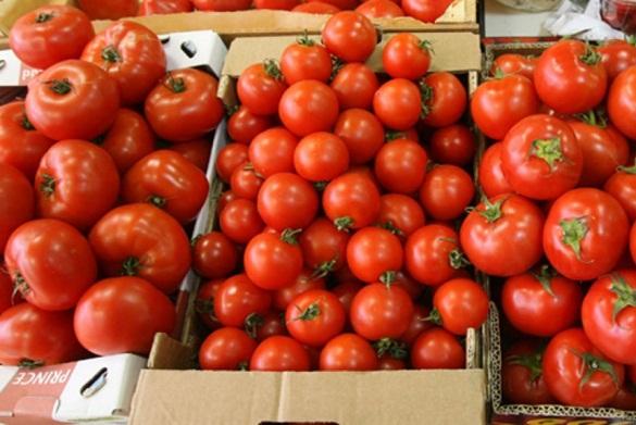 В ноябре в Россию вернуться турецкие помидоры. 377869.jpeg