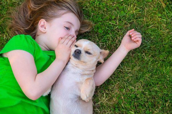 Диалог с собакой: как мы влияем друг на друга?. 393871.jpeg